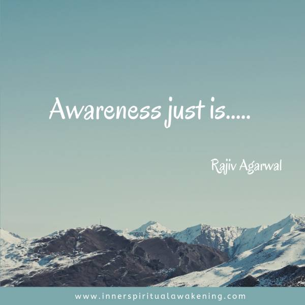 Awareness just is