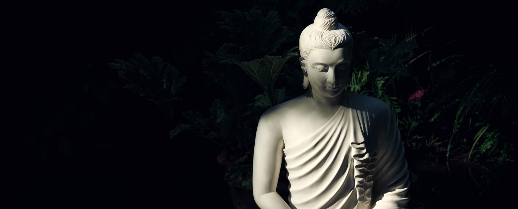 Buddha Zen Quotes