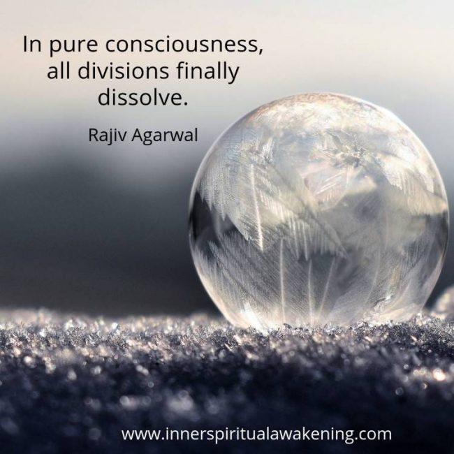 Pure consciousness rajiv quote